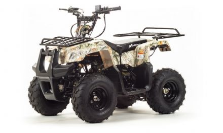 квадроцикл ATV 110 RIDER