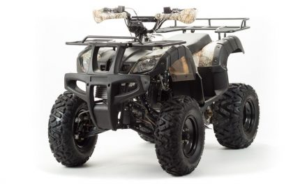 квадроцикл ATV 200 ALL ROAD Цена 118800р.