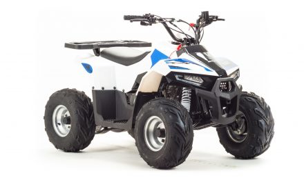 квадроцикл ATV 110 EAGLE