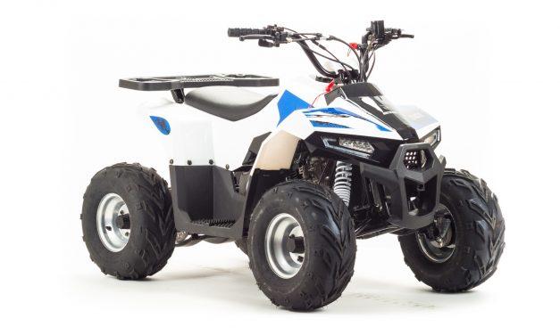 квадроцикл ATV 110 EAGLE Цена 70700р.
