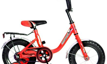 велосипед Мультяшка 1204 12″ Цена 5250р.