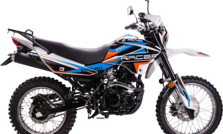 мотоцикл Racer RC250GY-C2 Panther Цена 99000р.