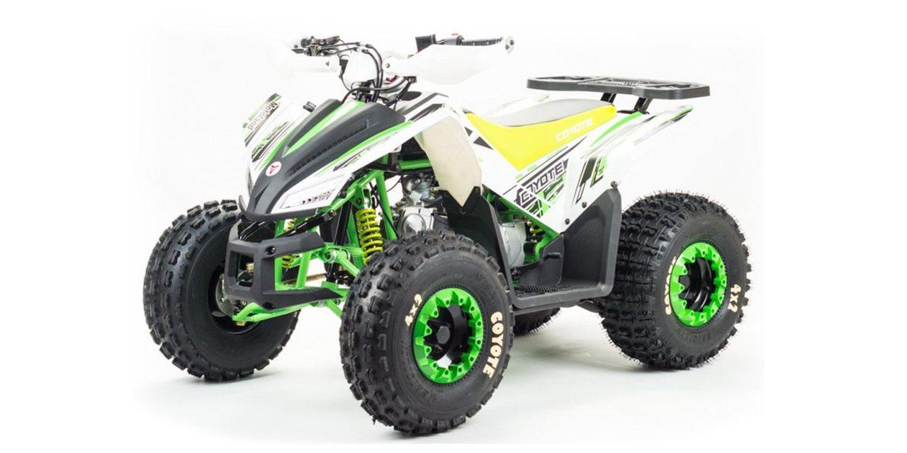 квадроцикл ATV 125 COYOTE