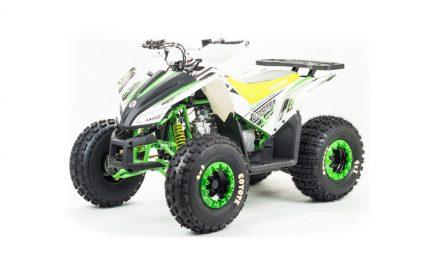 квадроцикл ATV 125 COYOTE Цена 87800р.