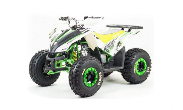 квадроцикл ATV 125 COYOTE Цена 89950 р.