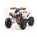 квадроцикл ATV 125 RAPTOR