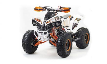 квадроцикл ATV 125 RAPTOR Цена 95400р.