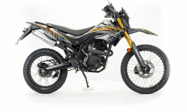 мотоцикл Кросс BLAZER 250 Цена 105750р.