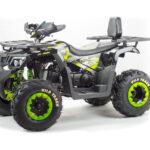 квадроцикл ATV 200 WILD TRACK Цена 179000 р.