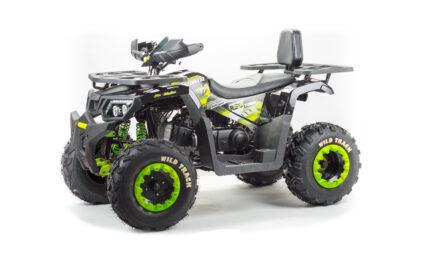 квадроцикл ATV 200 WILD TRACK Цена 151800р.