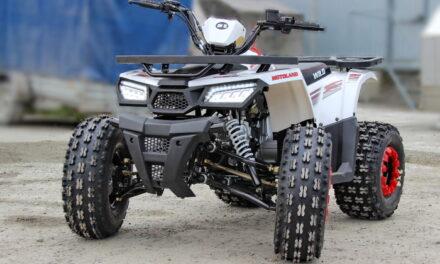 квадроцикл ATV 125 WILD