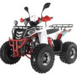 квадроцикл WELS Thunder Evo Х 125 Цена 83900р.