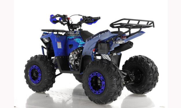 квадроцикл WELS Thunder Evo125 Цена 75300р.