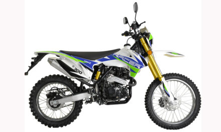 мотоцикл Racer RC300-GY8A Enduro 300 Цена 138550 р.