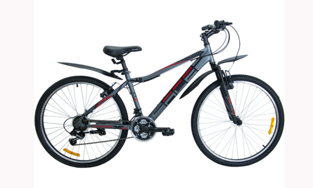 велосипед RACER 26-10 (16″) disk Цена 11200 р.