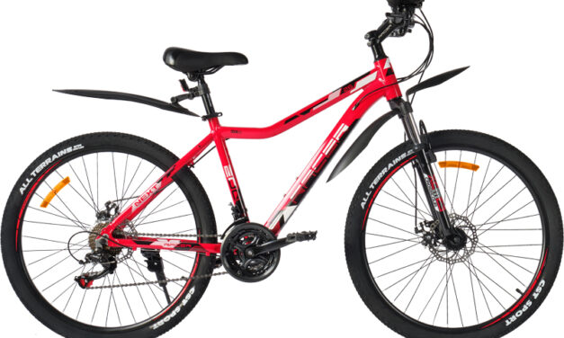 велосипед RACER 26 NEXT 220D (18″) disk Цена 19400 р.