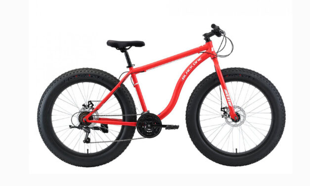 велосипед 26″ BLACK ONE MONSTER D 20ск. Цена 24600 р.